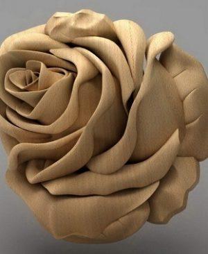 منبت گل